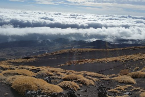 Mount Etna Hike Tour